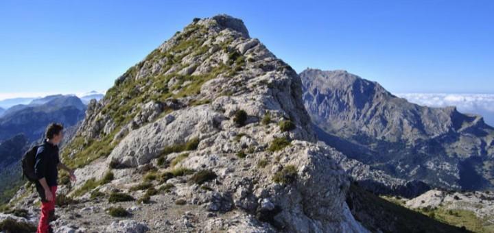 La Serra dels Teixos