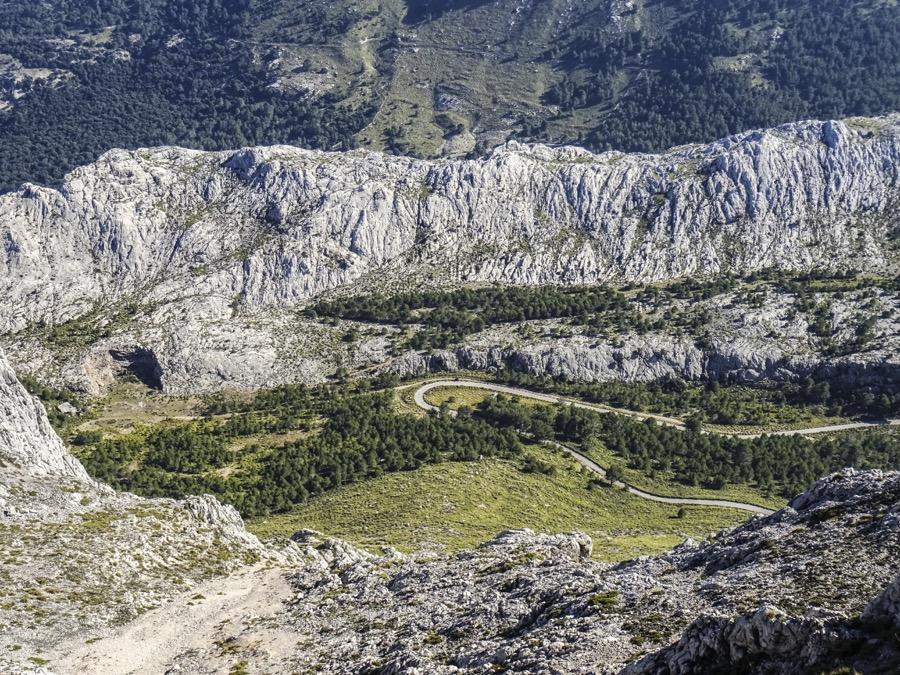 PuigMajor